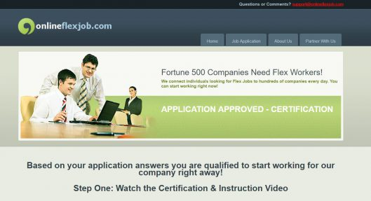 Online Flex Job Scam Review