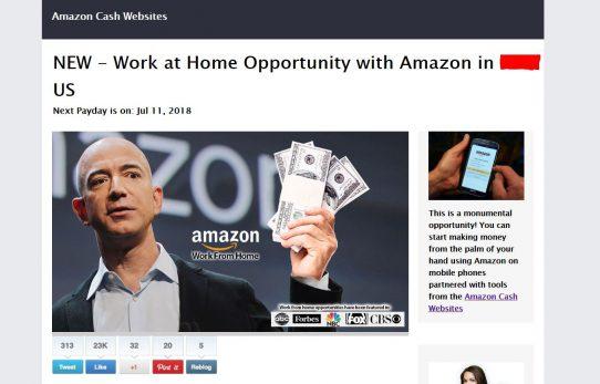 Amazon Cash Websites Scam Review
