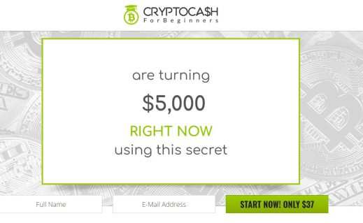 Crypto Cash For Beginners Scam Review